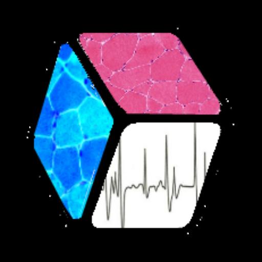 LA Neuromuscular Center Logo